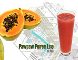Papaya Juice Processing Line
